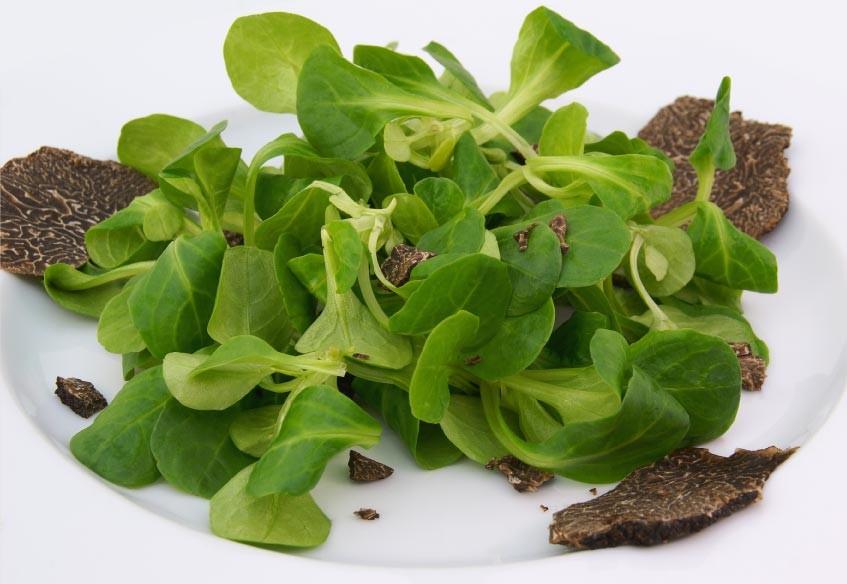 White Truffle Salad